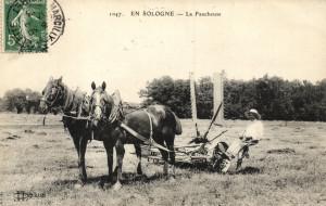 La Ferme - 13 La Faucheuse-1